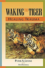 book waking the tiger.jpg