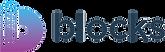 Blocks-logo-highres_final_horizotal (1).