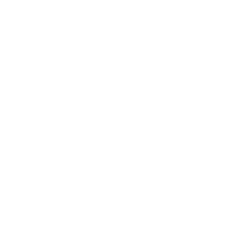 Jung Transport + Handels GmbH & Co. KG