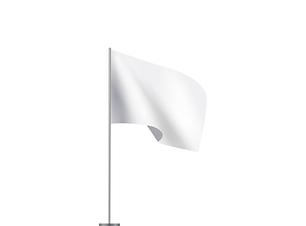 Flaggen.png