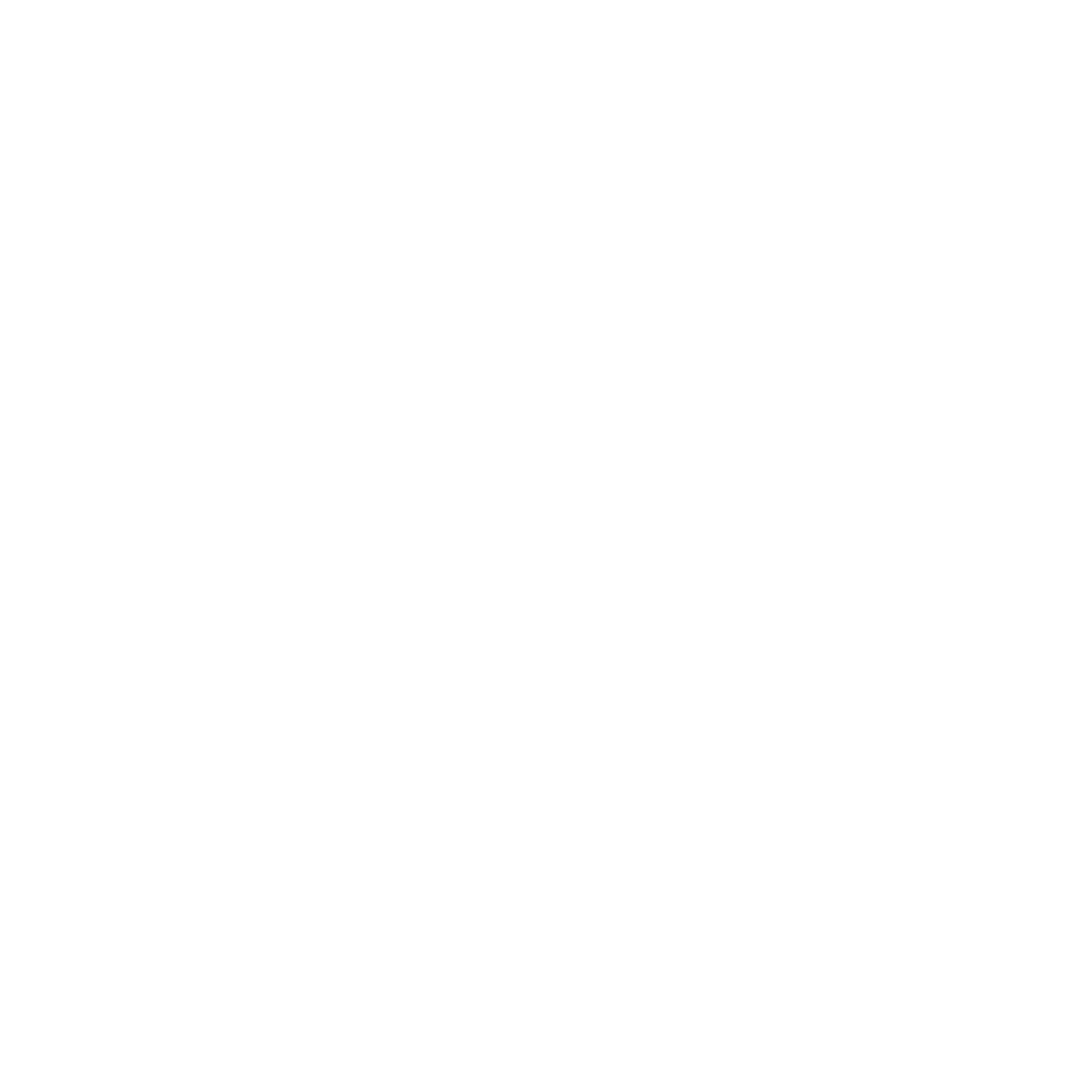 Möller Internationale Speditions-GmbH & Co. KG