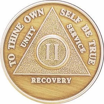 12 Step Medallions