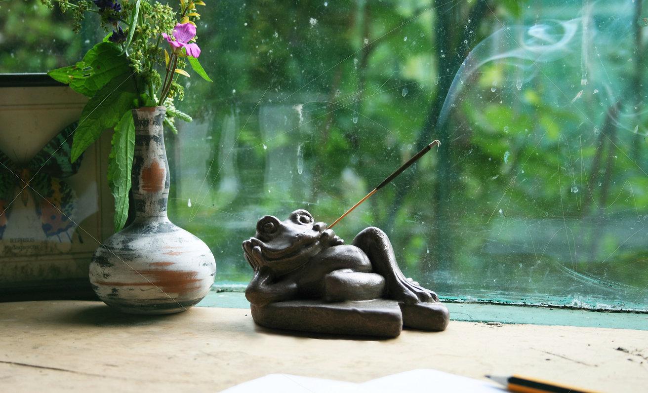frog-life.jpg