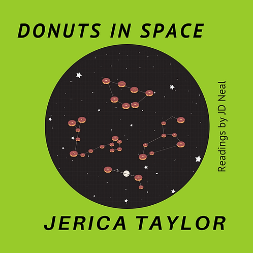 Donuts in Space AUDIO BOOK