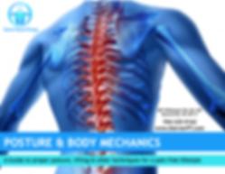 Sterner PT Posture Guide.png
