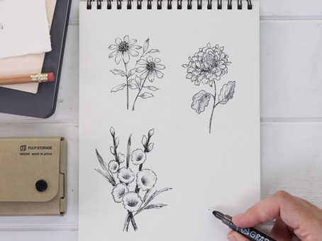 How to Draw Late Summer Flowers