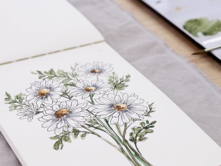 Learn to Paint a Daisy Watercolor