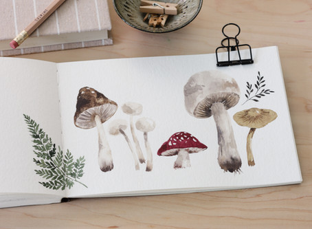 How to Paint Watercolor Mushrooms