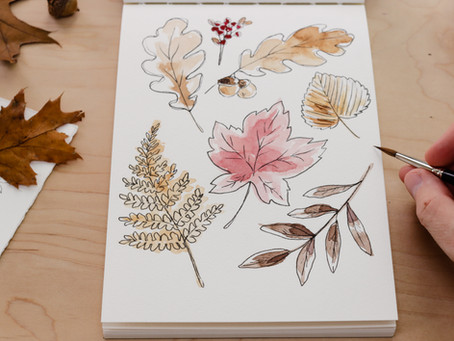 How to Draw Autumn Leaves