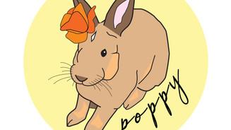 PoppyLogo-01.jpg
