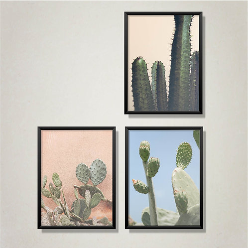 Cactus Wall Art Prints Collection
