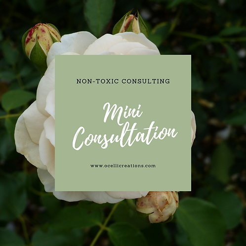Non-toxic Consulting -- Mini Consultation