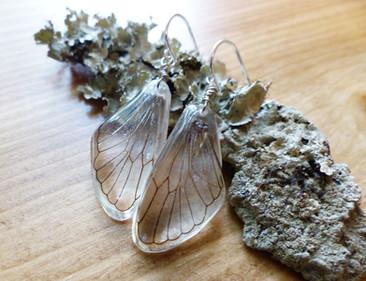 Cicada hindwing earrings styled.jpg