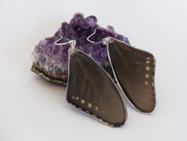 pipevine_swallowtail_forewing_earrings.j