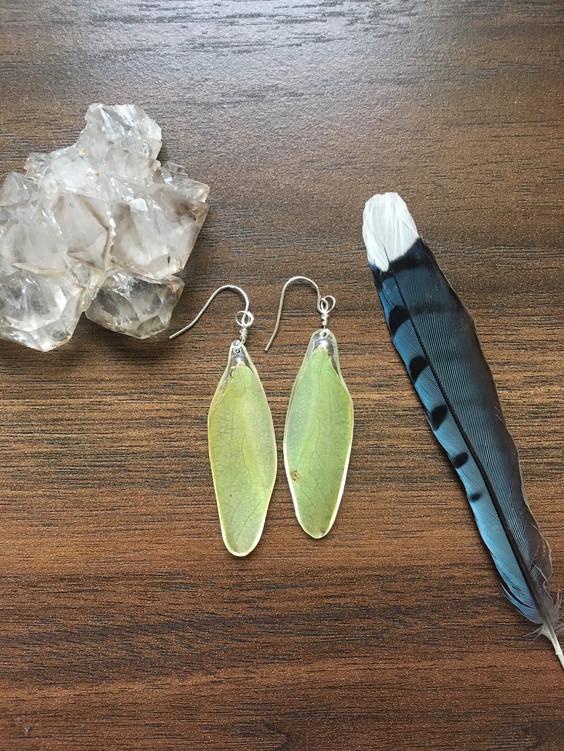 katydid wing earrings.JPG