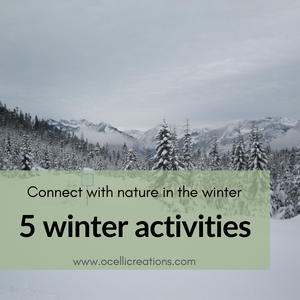 Connect with nature in the winter // 5 winter activities