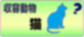スクリーンショット 2019-05-23 1.35.22.png