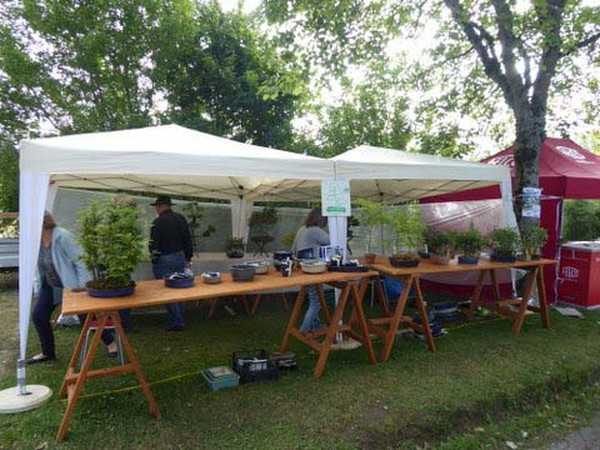 Workshop Nicolas Crivelli 2019