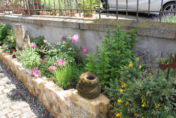 Garten Ferienwohnung Zollhaus Murten