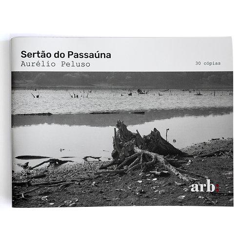 Sertão do Passaúna - Aurélio Peluso, 2020