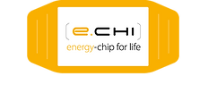 e-chi_chip2-TransZen.png