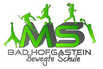 logo MS brief.png