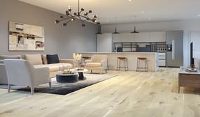 archvizstudio3d_living room v1.jpg