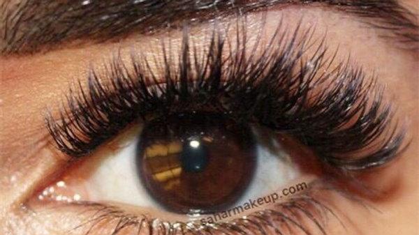 Online Russian lash training