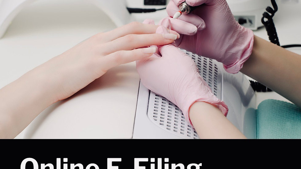 Online accredited E-Filing course