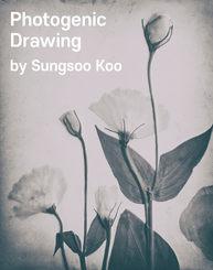 Photogenic Drawing