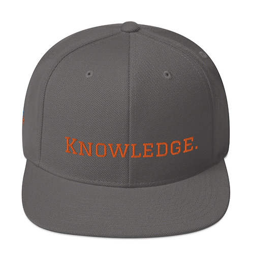 Knowledge Snapback