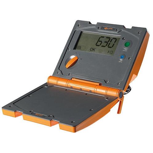 Gallagher W210 Weigh Scale