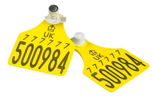 Allflex Primary & Tissue Sampling Tags from £2.70ex vat