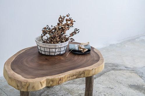 Edge Live Coffee Table
