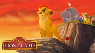 Lion Gurad