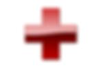 Dr.Nerd Logo Red Cross