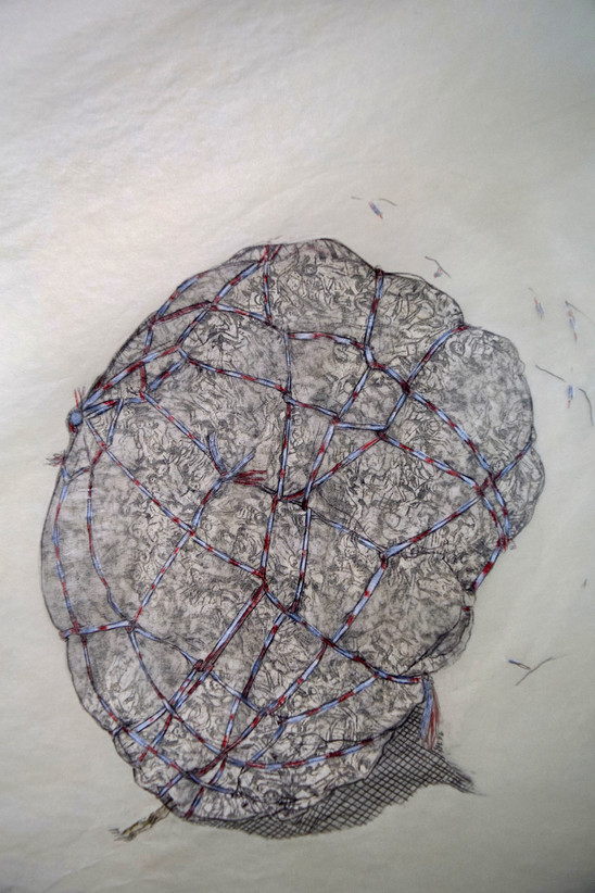 Trashball (Chase); Detail