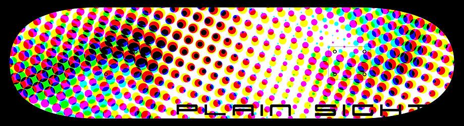 Plain Sight 2.jpg