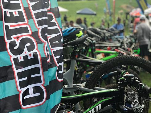 bikes.flags.jpg
