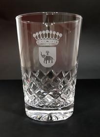 Vaso Gin Tonic tallado y grabado con escudo