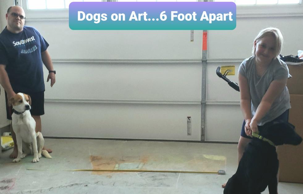 Dogs on Art 6 Foot Apart