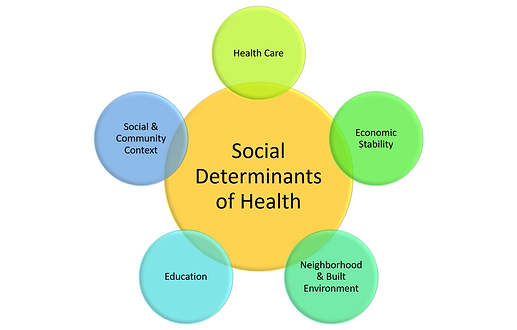 Social Determinants of Health Graphic fo