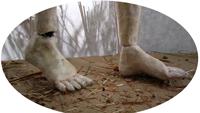TBW_feet_transparent