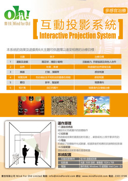 Interactive Projection System