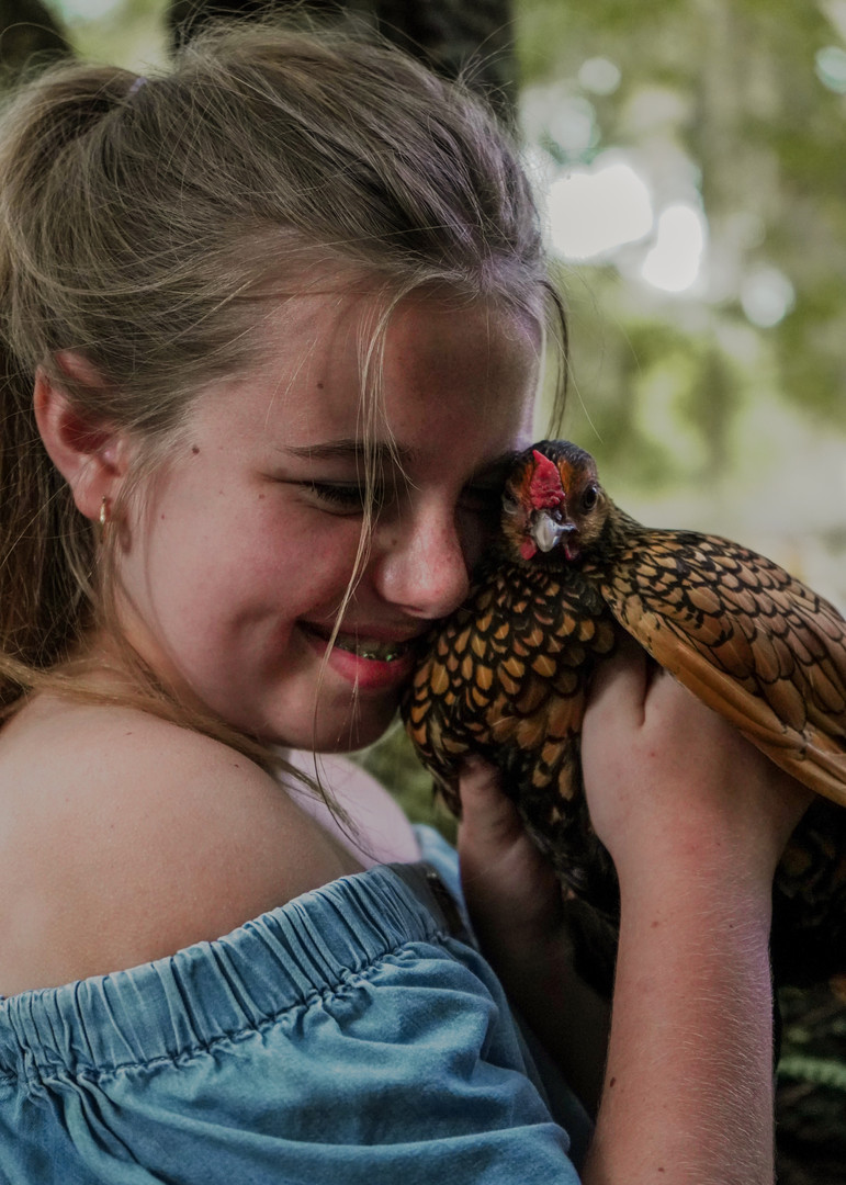 Chicken Photoshoot