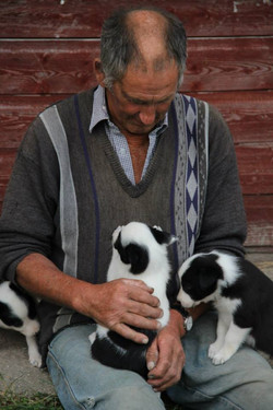 Bob and the puppies