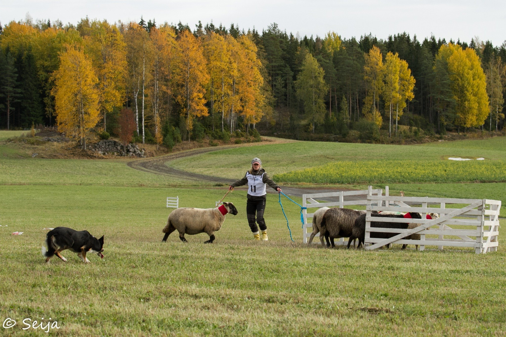 Thor in the Finnish National, pic Seija