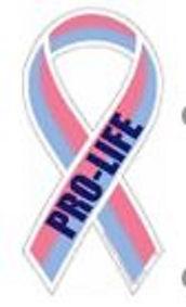 ProLifeRibbon.JPG