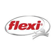 flexi-web.jpg
