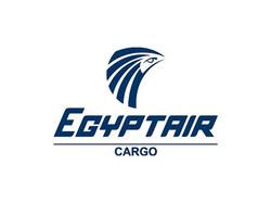 egyptair-cargo-airline-logo-1